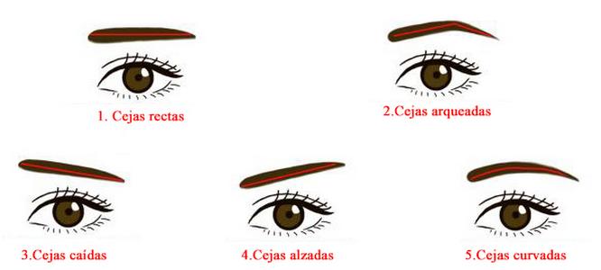 Tus cejas expresan cosas de ti kebuena - Hacerse las cejas en casa ...