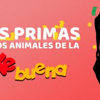 Las primas de Los Animales de La Ke Buena