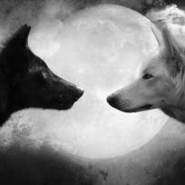 La parábola de los dos lobos