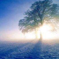 La Reflexión: Yo estoy ahí aun que tu no lo puedas ver