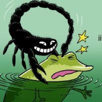La Reflexión: La rana y el escorpión