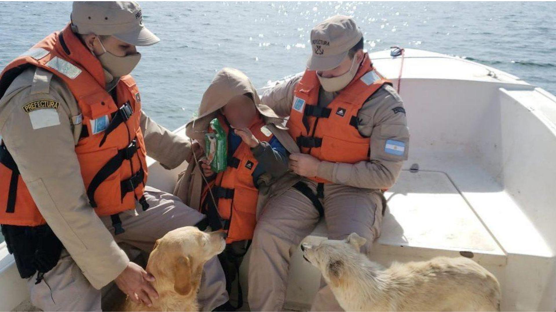 Niño con autismo sobrevive a una noche fría gracias a sus perritos